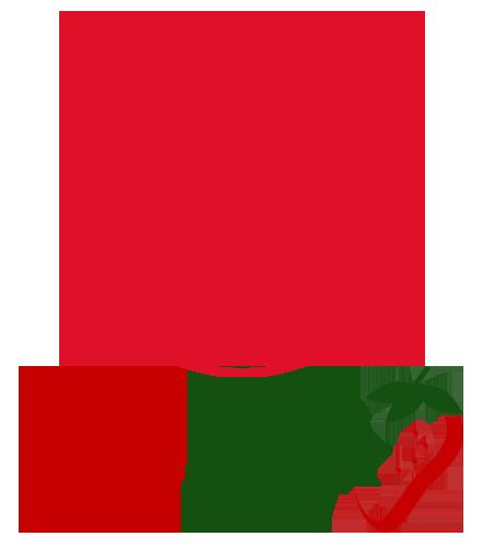 Bionest apuesta por la Limpieza Criogenica
