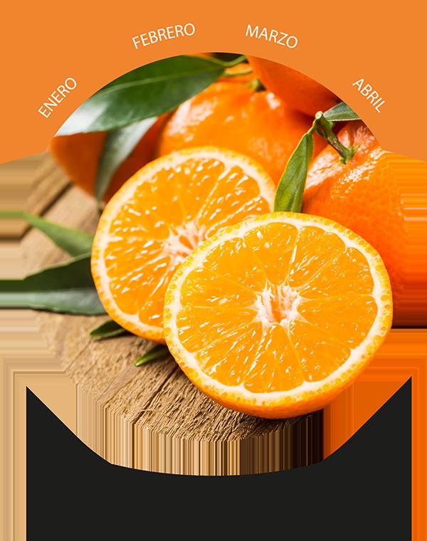 Naranja biológica