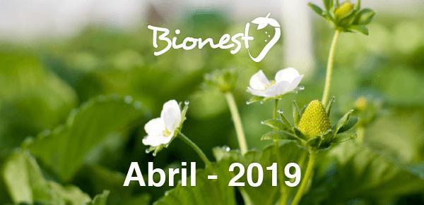 bionest-abril19