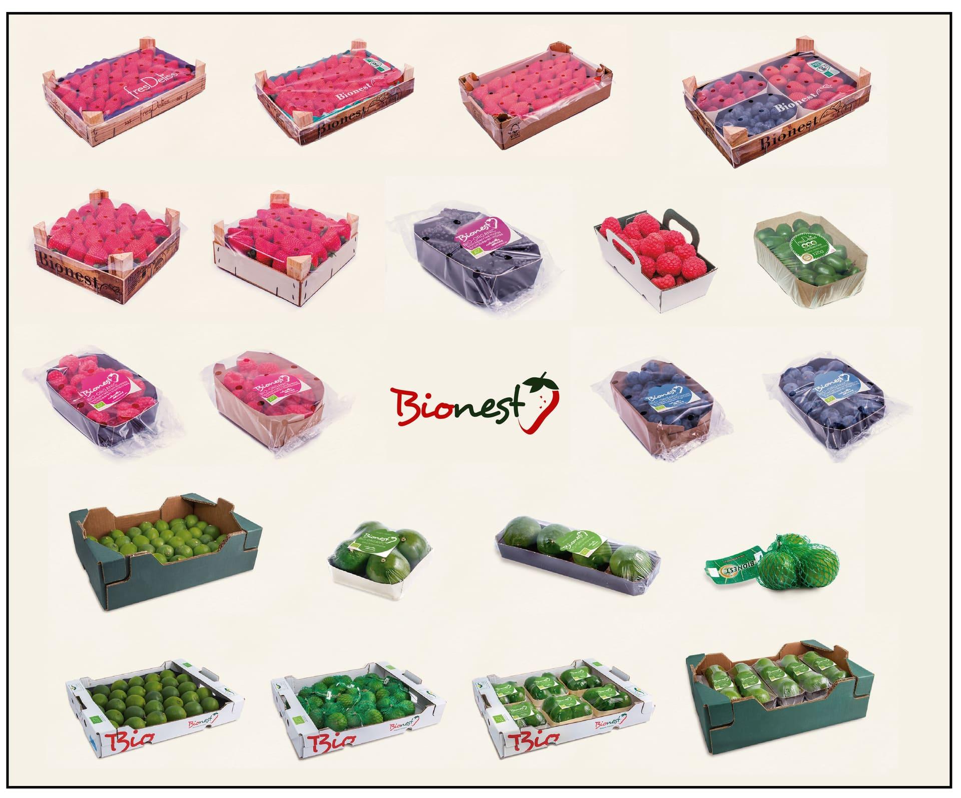 bionest-internacional-frutos-rojos-ecologico-07