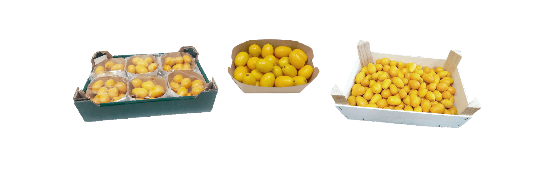 kumquat-packaging-34