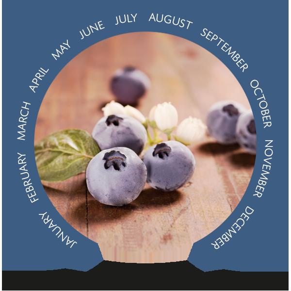 organic-calendar.blueberries-en